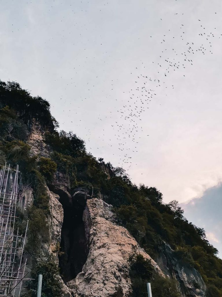 Bat Cave in Battambang Cambodia Killing Caves