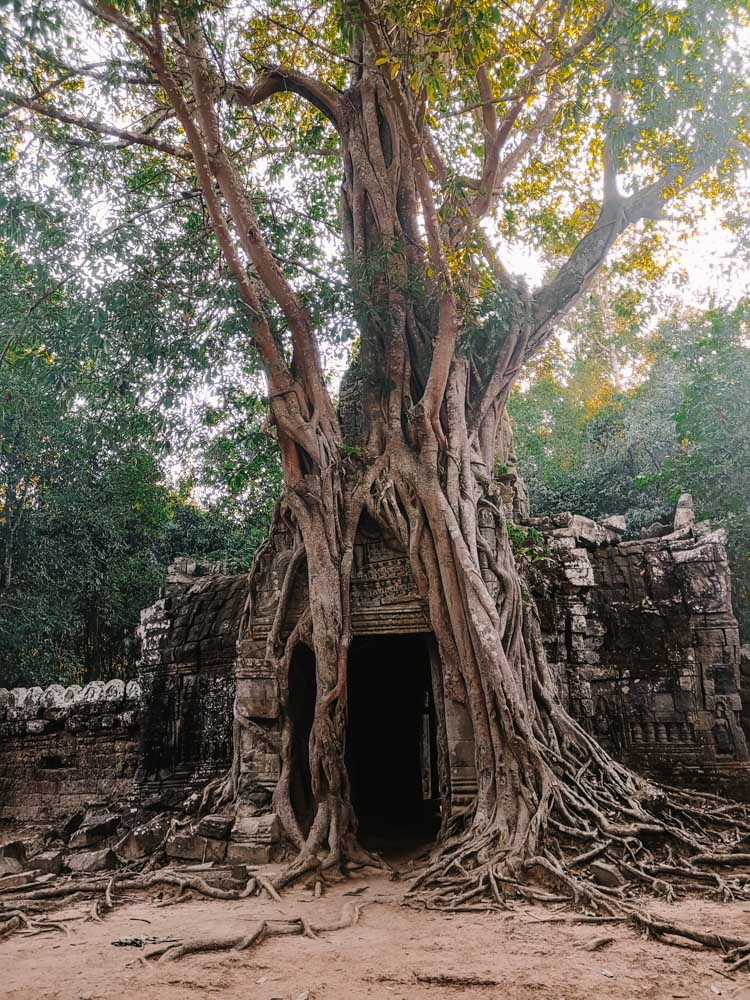 Prasat Ta Som is one of the 10 most beautiful temples of Angkor